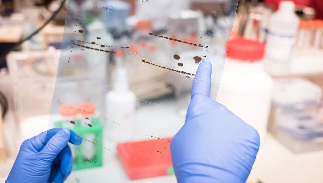 Ученый рассматривает результаты лабораторных исследований. Архивное фото