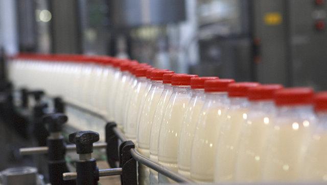 Производство молочных продуктов, архивное фото