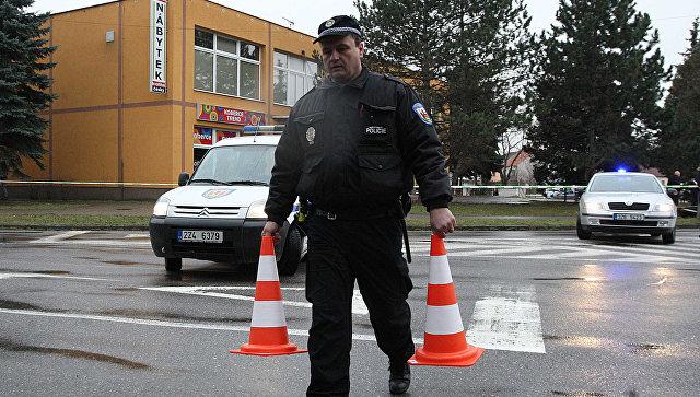 Чешский полицейский. Архивное фото