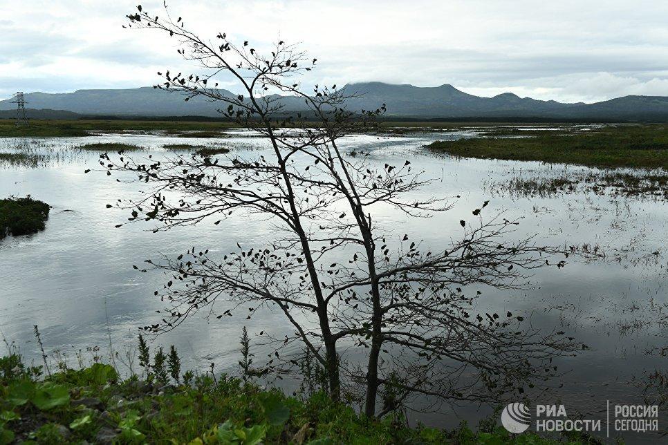 Разлившаяся речка Серебрянка у поселка Южно-Курильск на острове Кунашир Большой Курильской гряды