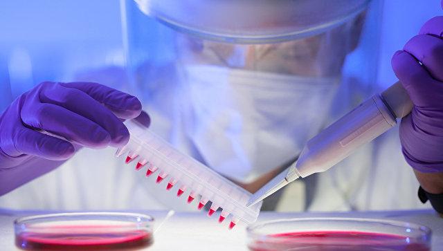 СМИ: Ученые объяснили, почему эксперименты с ГМО могут вызвать катастрофу