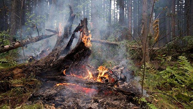 Пожары в Бурятии. Архивное фото