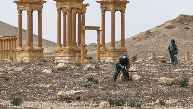 Разминирование исторической части и окрестностей Пальмиры. Архивное фото