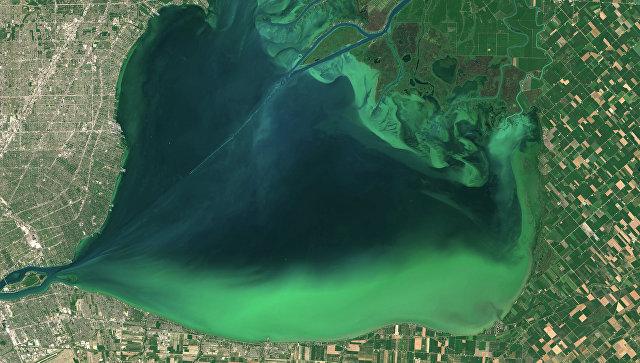 Изменение климата сделает океан ядовитым
