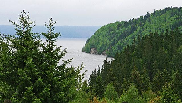 Концессионер вложит 3 млрд руб. встроительство моста вПермском крае