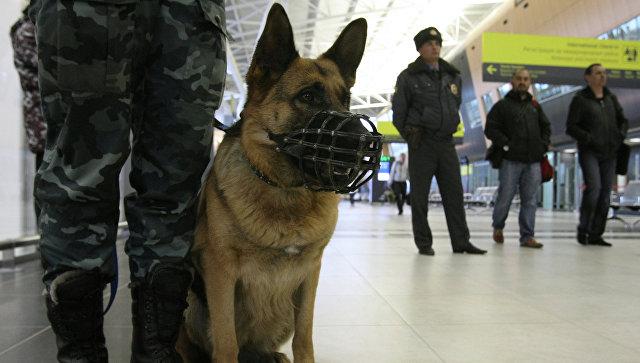 Гостей и служащих «Крокус Экспо» эвакуировали из-за угрозы взрыва
