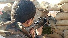 Боец сирийской армии на юге Алеппо. Архивное фото