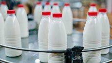 Молочная продукция. Архивное фото