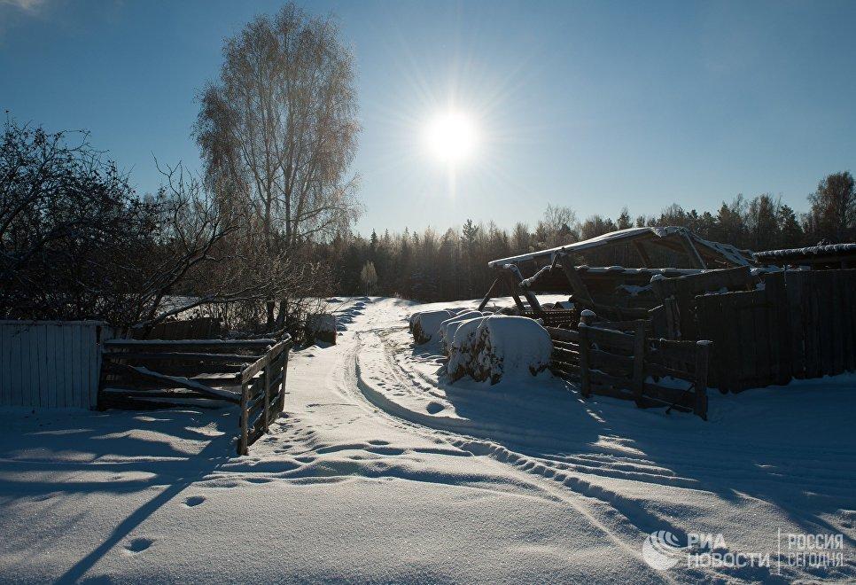 Снег в селе Березовка Томской области