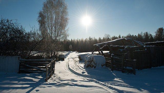 Два звездопада увидят граждане столицы кначалу зимы