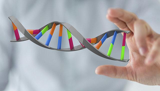 Модель ДНК. Архивное фото.