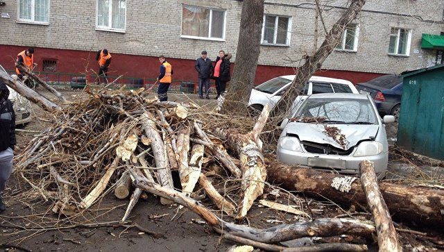 Практически 18 тыс. граждан Ставрополья остались без света из-за сильного ветра