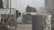 Военные внедорожники  Золотой дивизии Ирака едут по Мосулу. Архивное фото