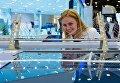 Макет Западного скоростного диаметра в Санкт-Петербурге