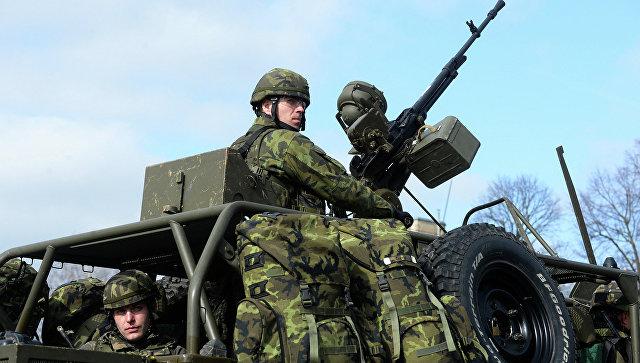 Военнослужащие чешской армии во время совместных учений войск НАТО The Noble Jump