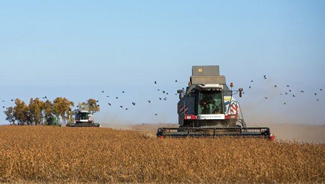 Эхо войны: Трамп заставил американских фермеров уничтожать урожай