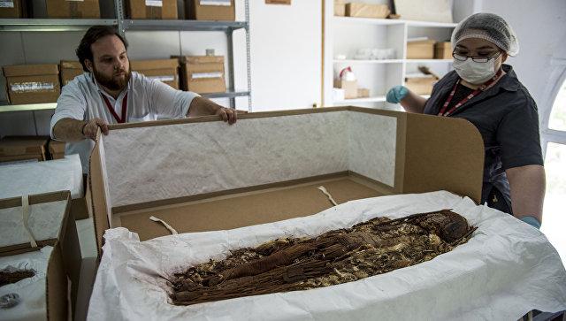 ВЧили началось сканирование самых старинных мумий наЗемле