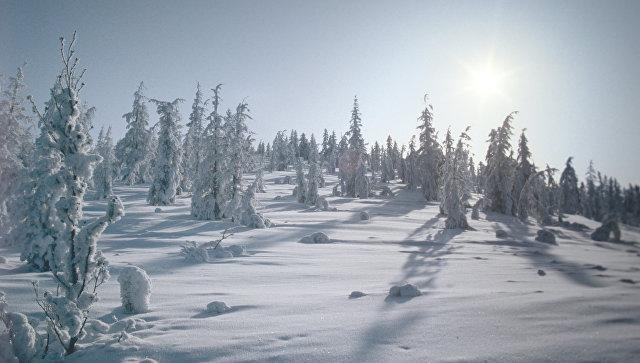Медведев утвердил создание ТОР «Южная Якутия»