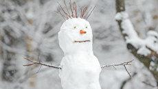 Снеговик. Архивное фото