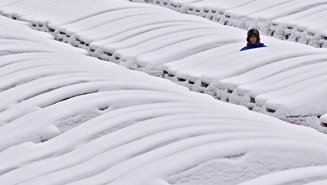 Снегопад вБельгии вызвал транспортный коллапс