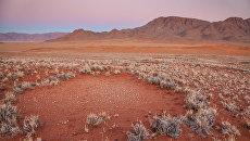Ведьмин круг в Намибии