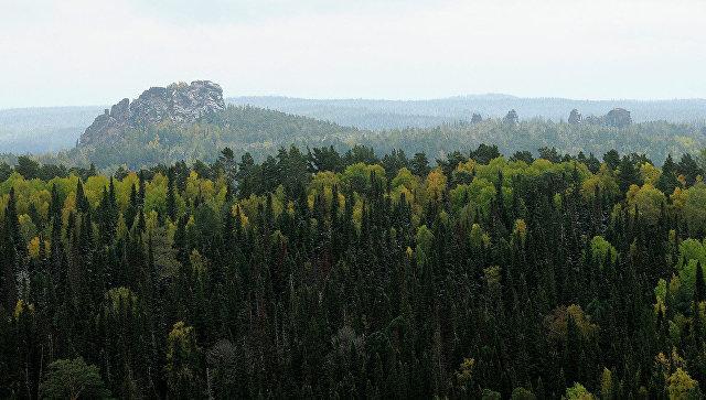 Государственный природный заповедник Столбы. Архивное фото