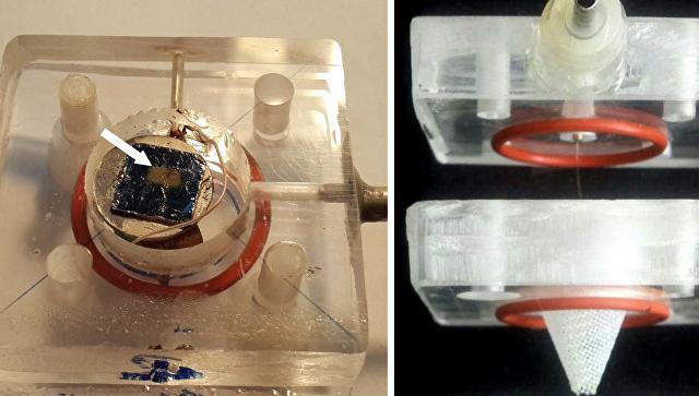 Прибор для поисков следов туберкулеза в дыхании человека, созданный российскими учеными