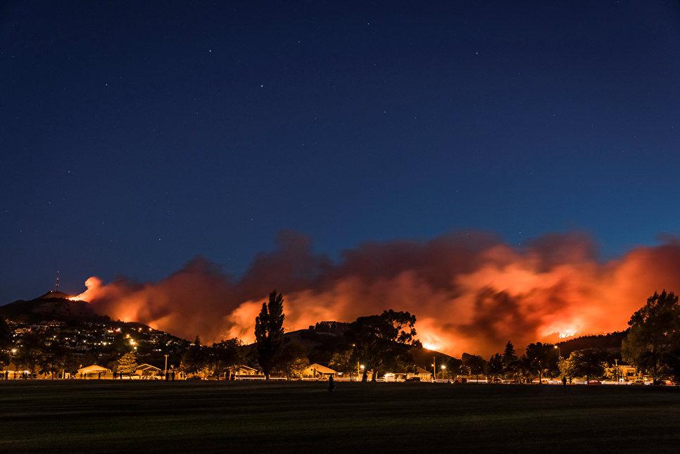 Лесные пожары на острове Южный Новой Зеландии
