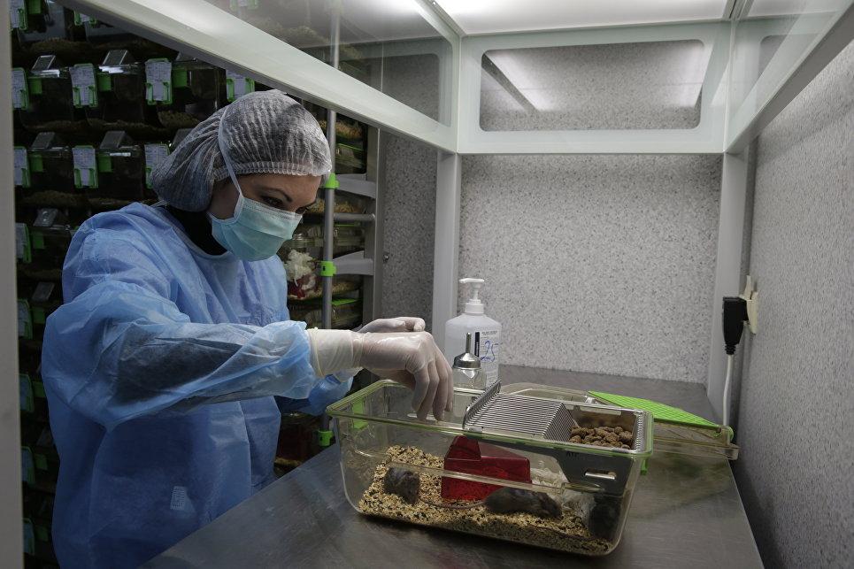Замедляющее старение вещество разработали ииспытали вМГУ