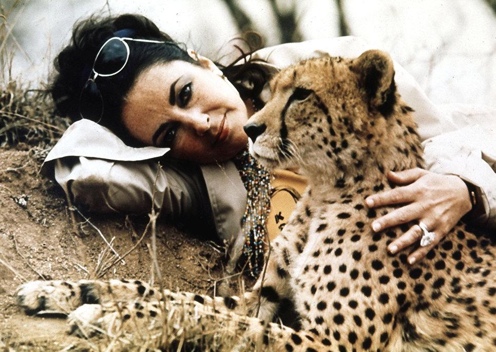Актриса Элизабет Тейлор посетила национальный парк Крюгера. Африка, 1975