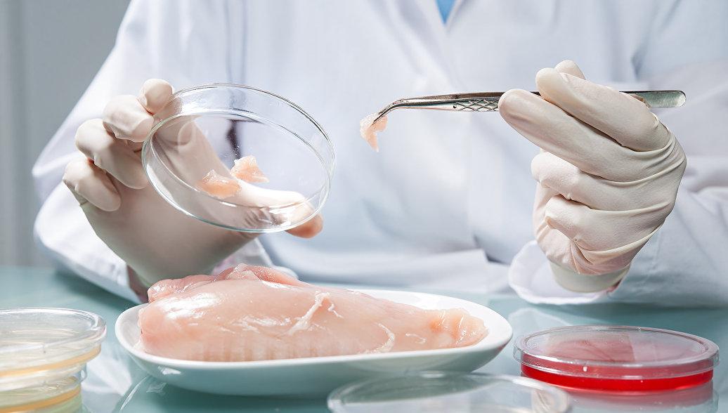 Россельхознадзор не пустил 162 тонны куриного мяса из Турции