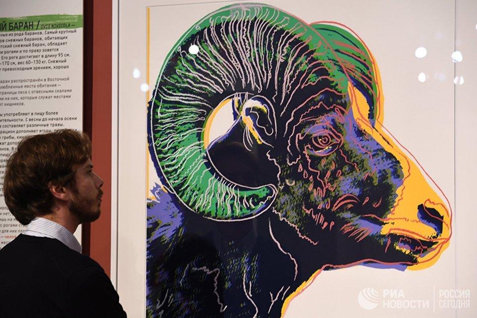 Посетитель на открытии выставки Энди Уорхол. Вымирающие виды в Дарвиновском музее в Москве