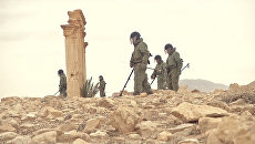 С Коршунами и собаками: как российские саперы ищут мины в Пальмире