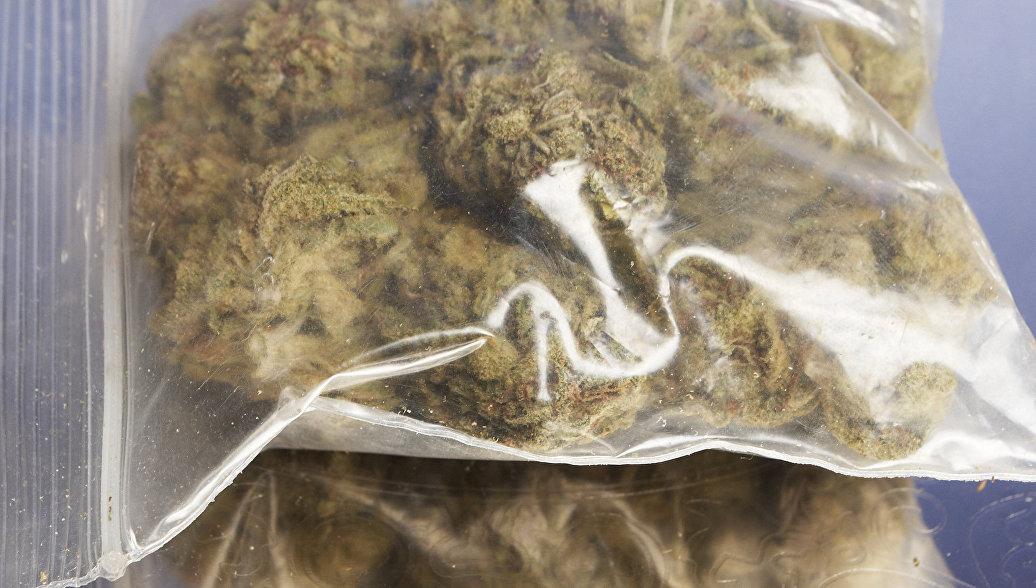 Более 200 парламентариев Италии выступили за легализацию марихуаны