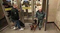 Сотрудник правоохранительных органов с собакой на станции Садовая. Архивное фото