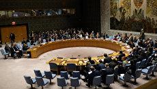 Заседание Совбеза ООН по Сирии. Архивное фото