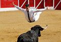 Участник прыгает через корову во время корриды Course landaise во Франции