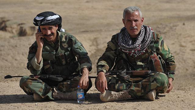 Бойцы курдской пешмерга. Архивное фото