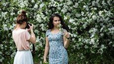 Девушки фотографируются в яблоневом саду в московском музее-заповеднике Коломенское. Архивное фото