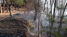 Тушение лесных пожаров в Иркутской области