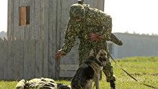 Сапер со служебной собакой. Архивное фото