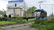 Сломанное ураганом дерево, на трамвайных путях в Москве