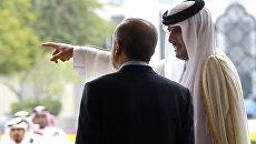 Эмир Катара шейх Тамим бен Хамад Аль Тани и президент Турции Реджеп Эрдоган во время встречи в Дохе