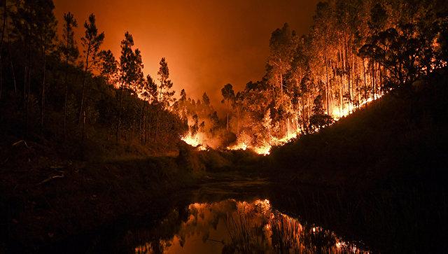 Огонь угрожает уничтожить окраины хорватского Сплита