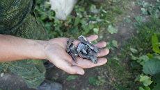 Осколки боеприпасов, выпущенных ВСУ по городу Стаханов в ЛНР. 23 июня 2017