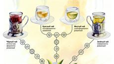 Любимый напиток россиян: как создают и как подделывают чай