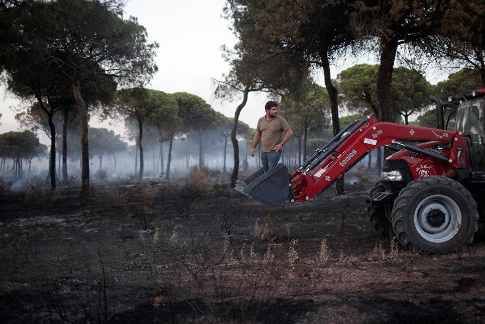 Тушение лесных пожаров в Испании