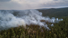Лесной пожар в Бичурском районе Бурятии. Архивное фото