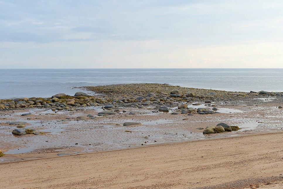 Водные массы поступают в Белое море от приливной волны, идущей из Атлантики. Огибая Кольский полуостров, через Горло (пролив, отделяющий северную часть моря он собственно моря)