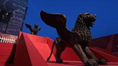 Крылатый лев - главный символ 68-го Венецианского международного кинофестиваля